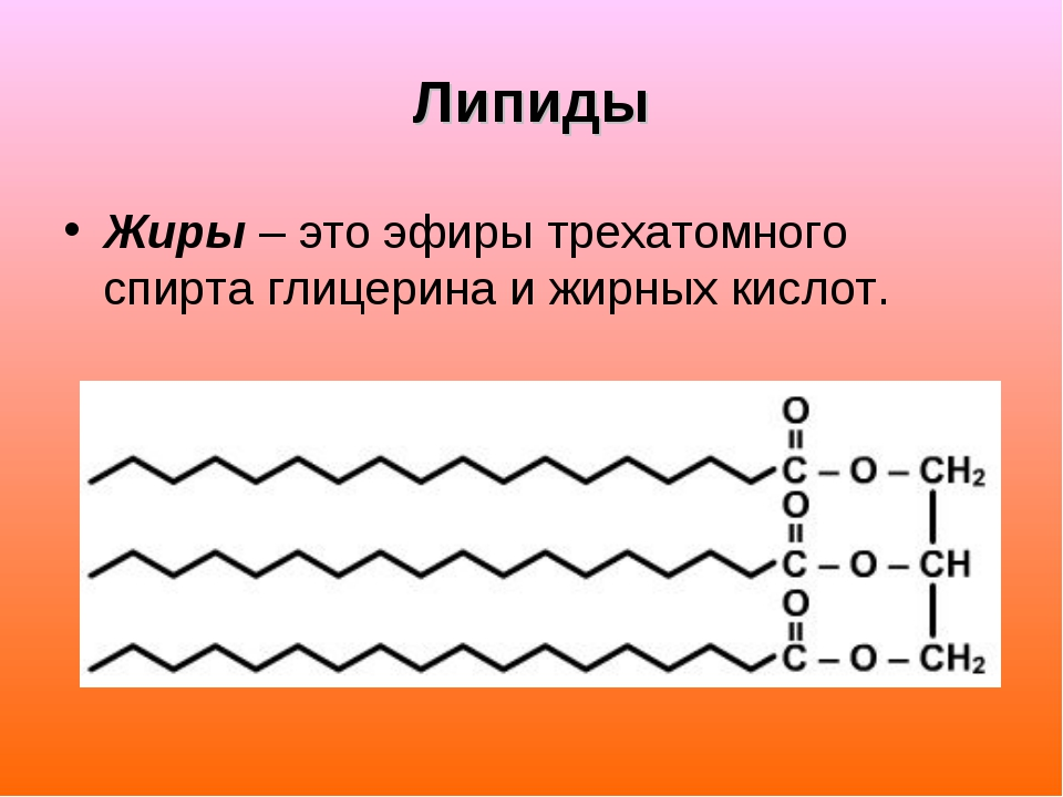 Липиды Жиры – это эфиры трехатомного спирта глицерина и жирных кислот.