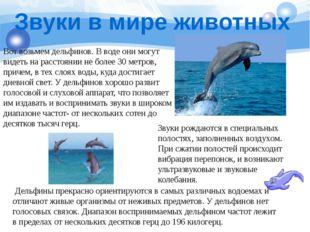Звуки в мире животных Вот возьмем дельфинов. В воде они могут видеть на расст