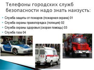 Служба защиты от пожаров (пожарная охрана) 01 Служба охраны правопорядка (пол