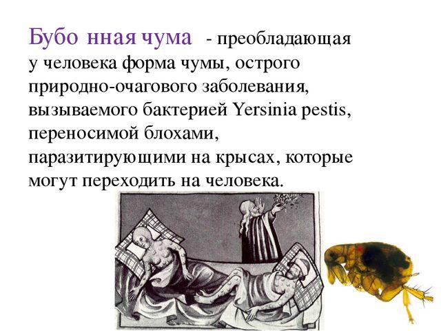 Бубо́нная чума́ - преобладающая у человека форма чумы, острого природно-очаго...
