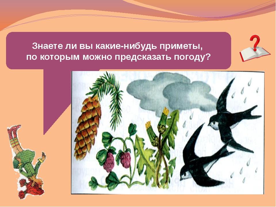 Знаете ли вы какие-нибудь приметы, по которым можно предсказать погоду?