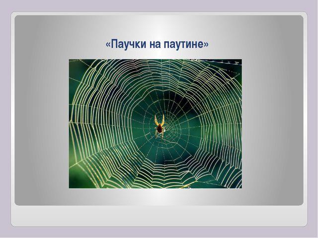 «Паучки на паутине»