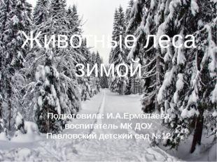 Животные леса зимой Подготовила: И.А.Ермолаева воспитатель МК ДОУ Павловский