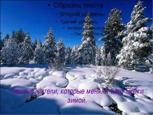 Лесные жители, которые меняют цвет шубки зимой.