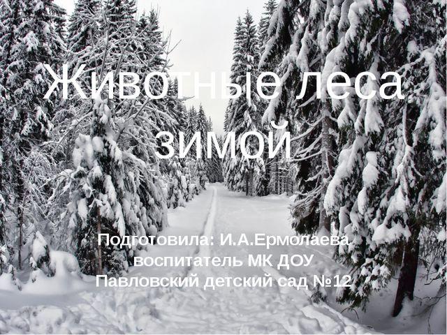 Животные леса зимой Подготовила: И.А.Ермолаева воспитатель МК ДОУ Павловский...