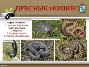 ПРЕСМЫКАЮЩИЕСЯ Отряд Черепахи Черепаха болотная Подотряд Змеи 2. Медянка 3. Г