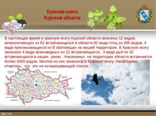 В настоящее время в красную книгу Курской области внесены 12 видов млекопитаю