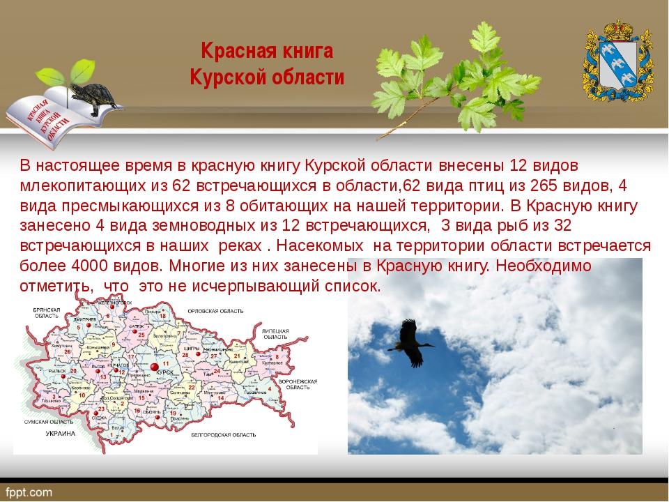В настоящее время в красную книгу Курской области внесены 12 видов млекопитаю...