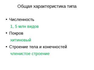 Общая характеристика типа Численность 1, 5 млн видов Покров хитиновый Строени