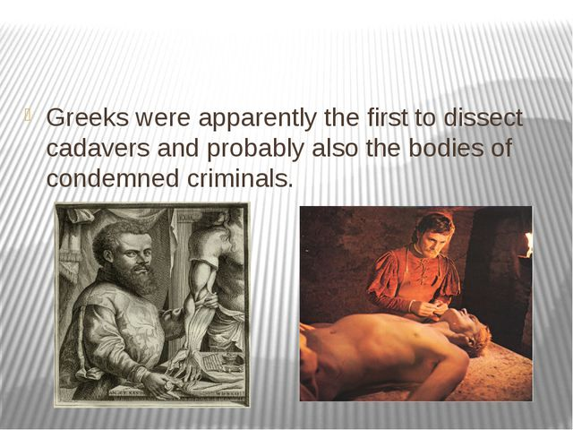 Greeks were apparently the first to dissect cadavers and probably also the b...
