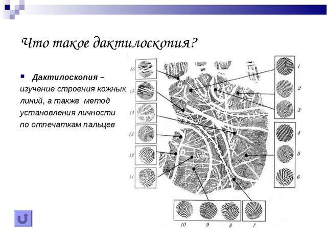 Что такое дактилоскопия? Дактилоскопия – изучение строения кожных линий, а та...