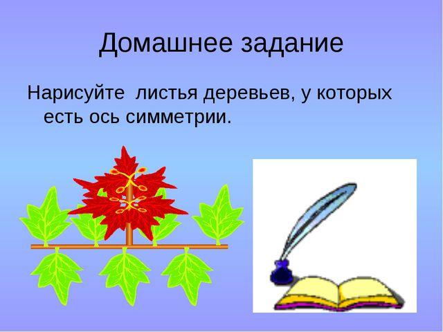 Домашнее задание Нарисуйте листья деревьев, у которых есть ось симметрии.