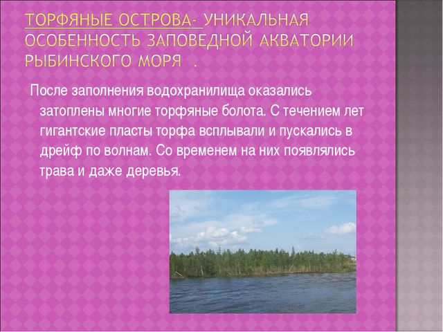 После заполнения водохранилища оказались затоплены многие торфяные болота. С...