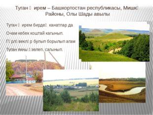 Туган җирем – Башкортостан республикасы, Мишкә Районы, Олы Шады авылы Туган җ