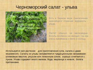 Черноморский салат - ульва Есть в Черном море симпатичная, нежнейшего строени