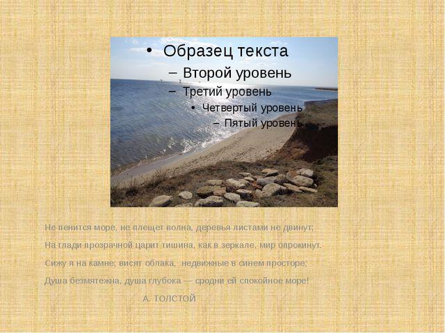Не пенится море, не плещет волна, деревья листами не двинут; На глади прозрач...