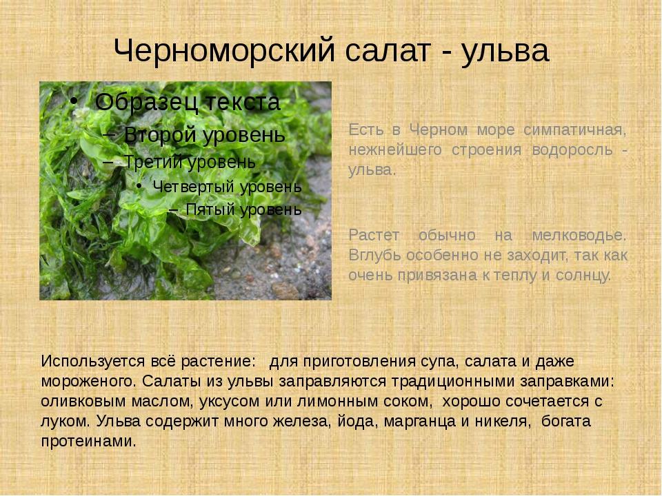 Черноморский салат - ульва Есть в Черном море симпатичная, нежнейшего строени...