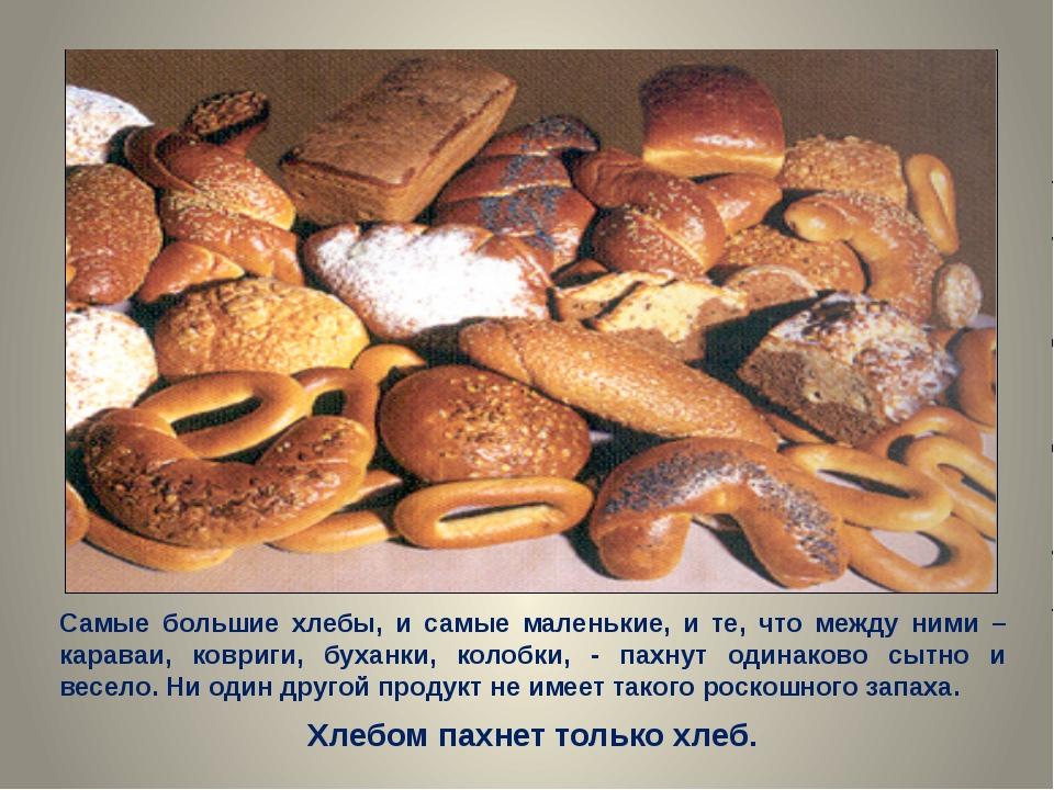 Самые большие хлебы, и самые маленькие, и те, что между ними – караваи, коври...