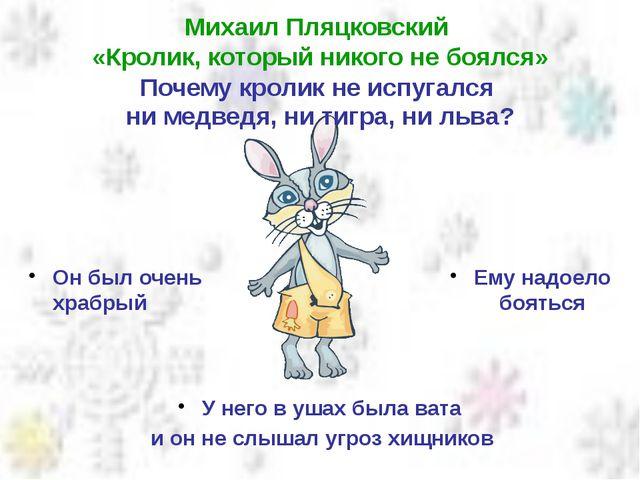 Михаил Пляцковский «Кролик, который никого не боялся» Почему кролик не испуга...