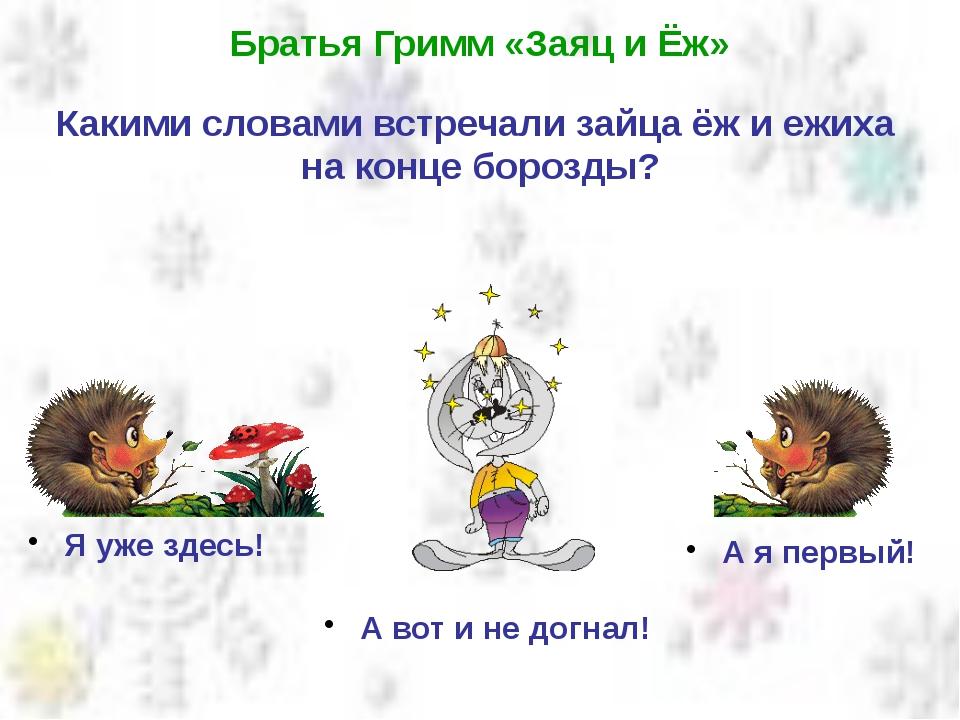 Братья Гримм «Заяц и Ёж» Какими словами встречали зайца ёж и ежиха на конце б...