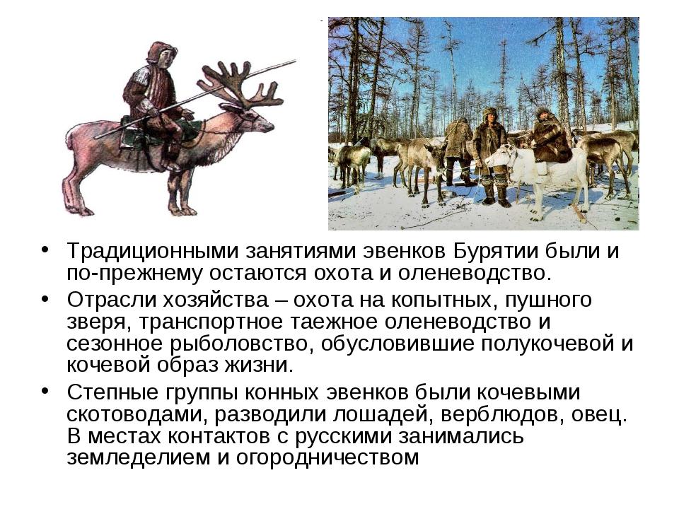 Традиционными занятиями эвенков Бурятии были и по-прежнему остаются охота и о...