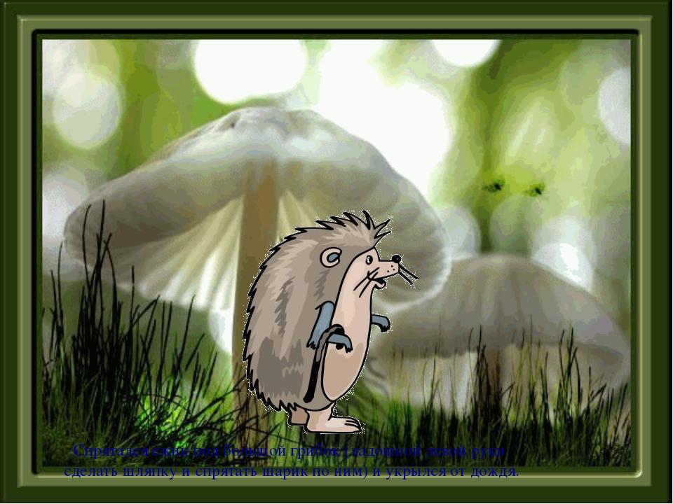 Спрятался ежик под большой грибок (ладошкой левой руки сделать шляпку и спрят...