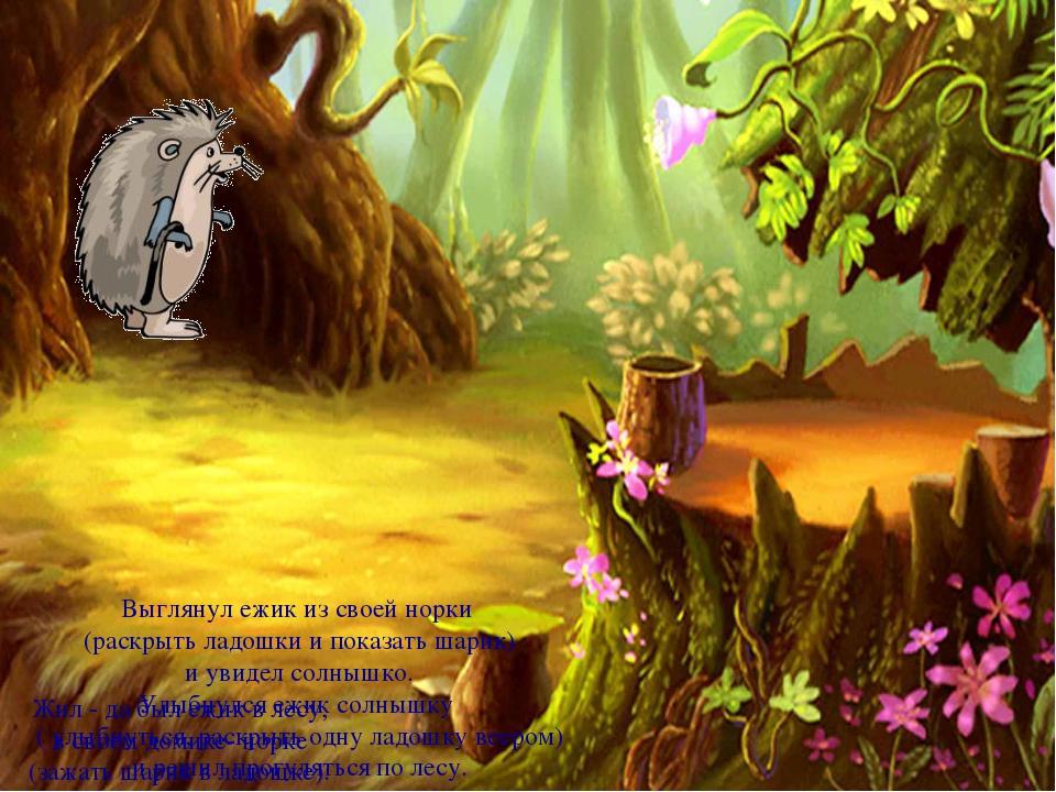 Жил - да был ежик в лесу, в своем домике- норке (зажать шарик в ладошке). Выг...