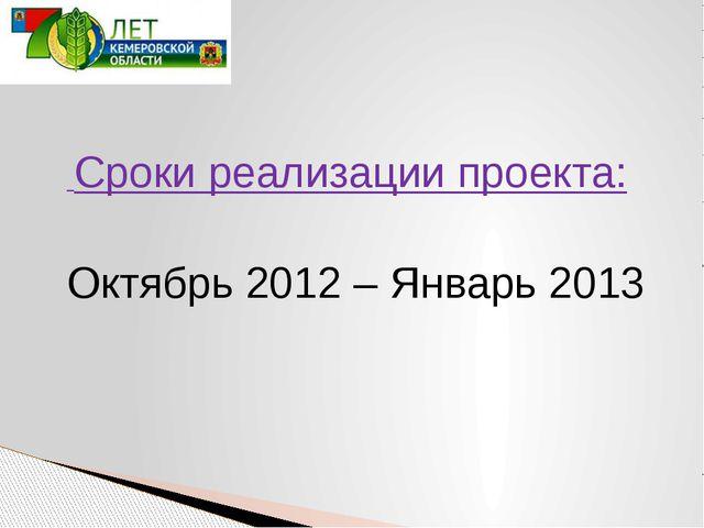 Сроки реализации проекта: Октябрь 2012 – Январь 2013