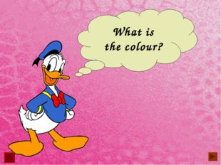 What is the colour?