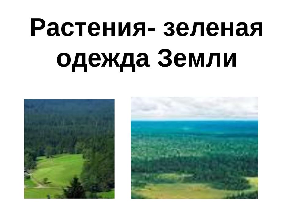 Растения- зеленая одежда Земли
