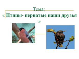 Тема: « Птицы- пернатые наши друзья »