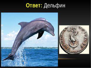 Ответ: Дельфин