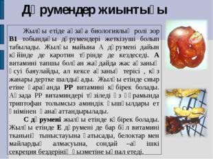 Дәрумендер жиынтығы Жылқы етіде ағзаға биологиялық ролі зор В1 тобындағы дәру