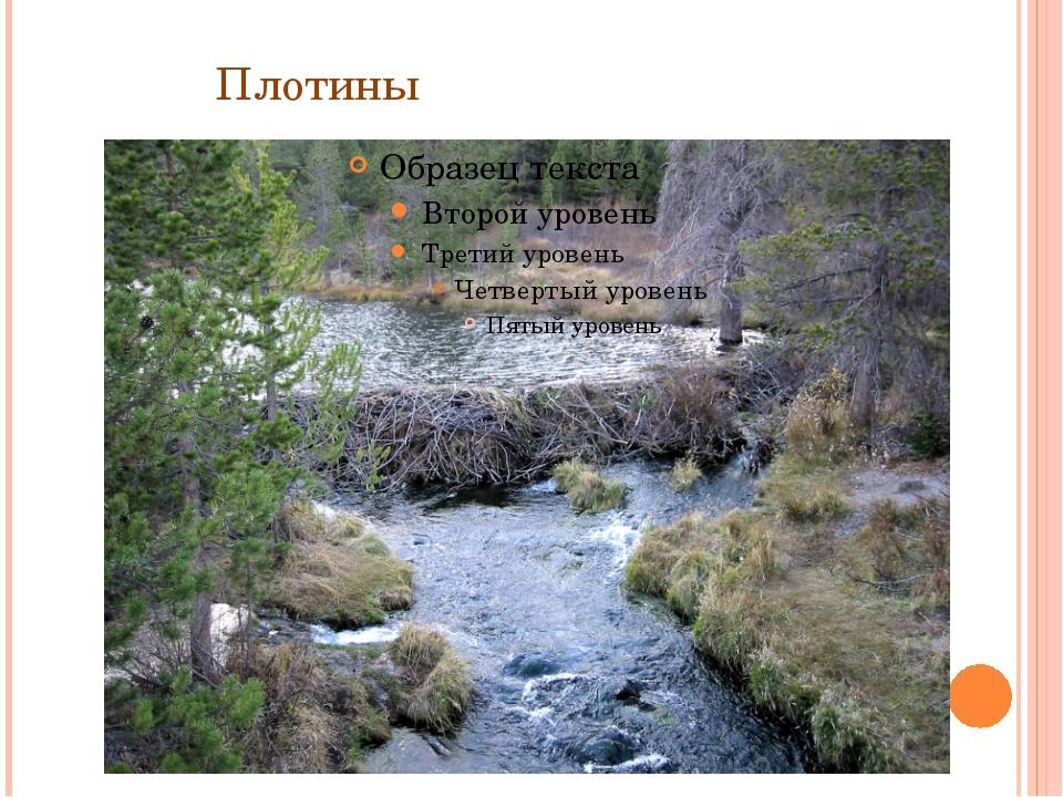Плотины