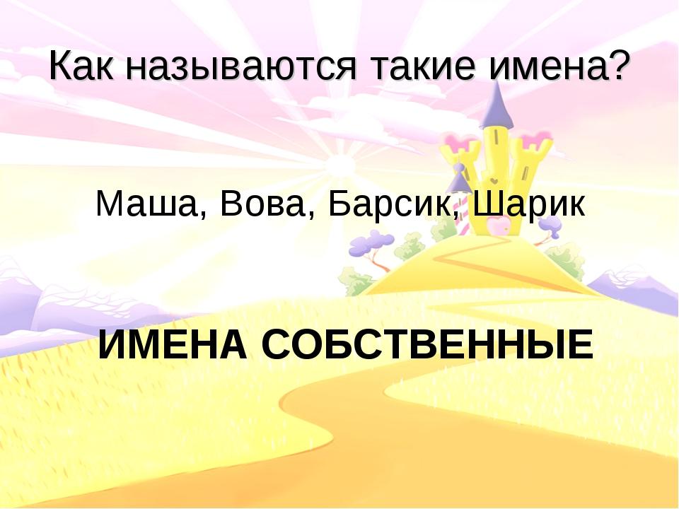 Как называются такие имена? Маша, Вова, Барсик, Шарик ИМЕНА СОБСТВЕННЫЕ