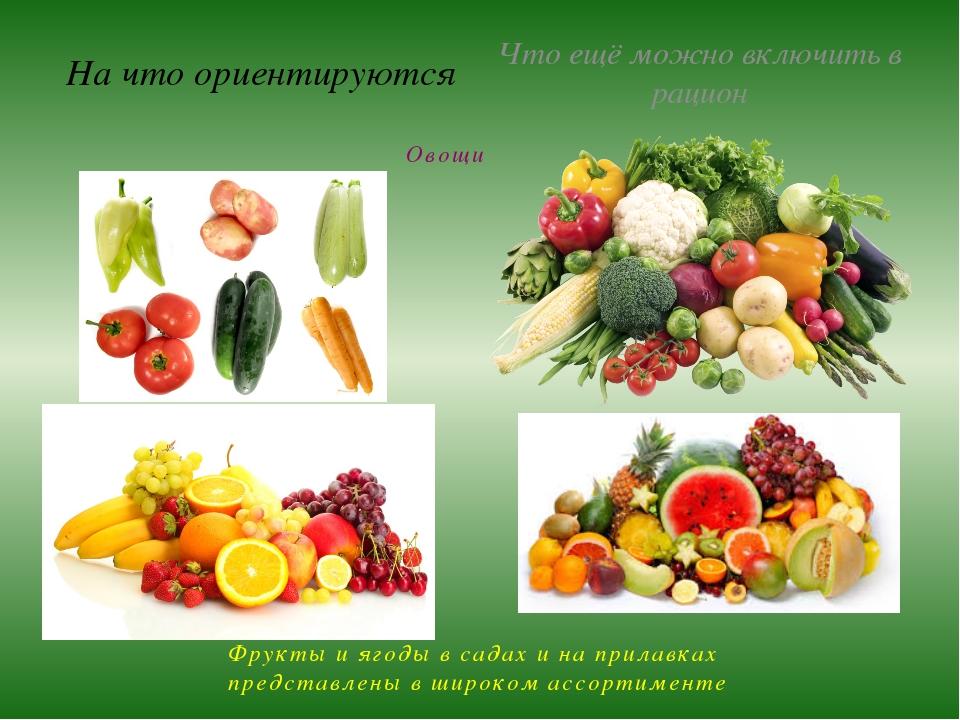 На что ориентируются Что ещё можно включить в рацион Овощи Фрукты и ягоды в с...