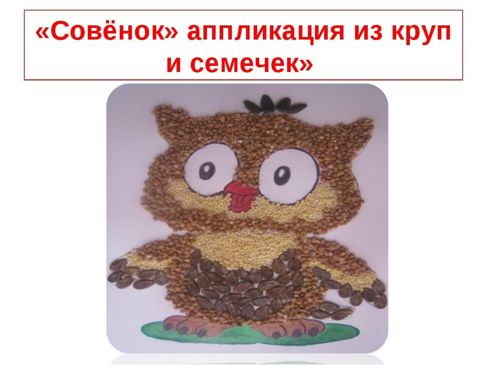 «Совёнок» аппликация из круп и семечек»