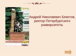 Андрей Николаевич Бекетов, ректор Петербургского университета.