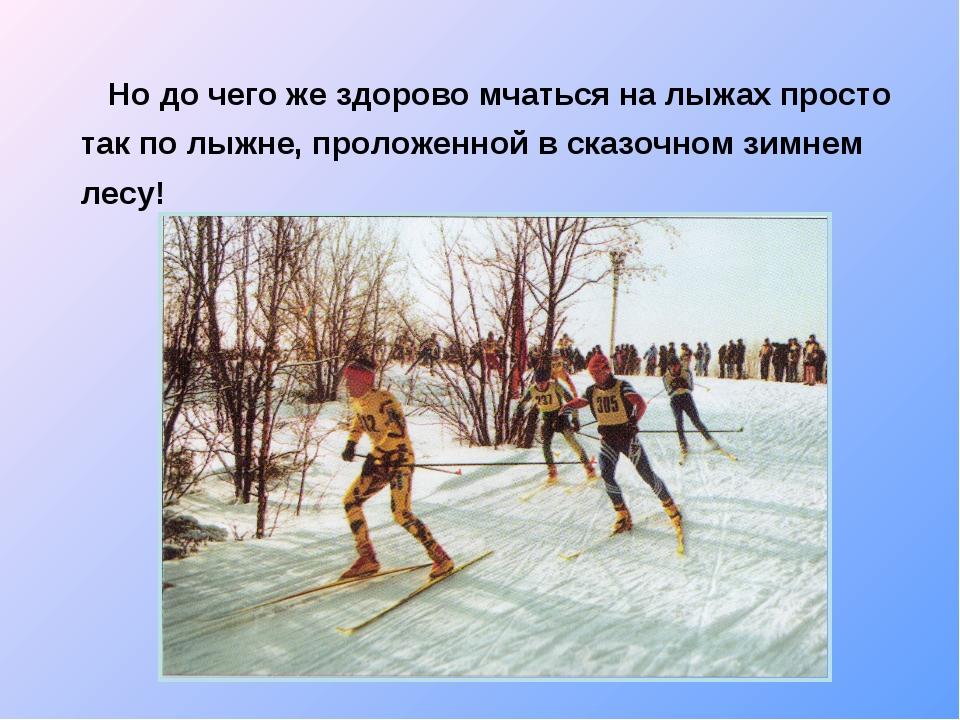 Но до чего же здорово мчаться на лыжах просто так по лыжне, проложенной в ск...