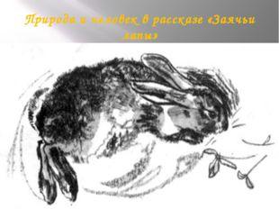 Природа и человек в рассказе «Заячьи лапы»