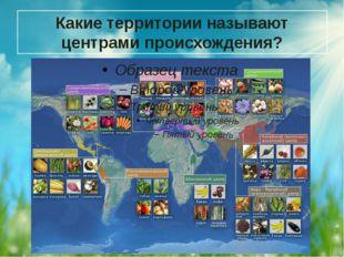 Какие территории называют центрами происхождения?