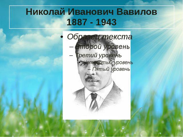 Николай Иванович Вавилов 1887 - 1943