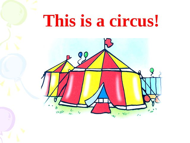 This is a circus!