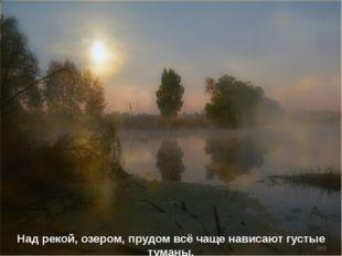 Над рекой, озером, прудом всё чаще нависают густые туманы.