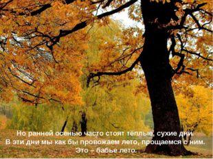 Но ранней осенью часто стоят тёплые, сухие дни. В эти дни мы как бы провожаем
