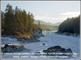 В самом конце осени на водоёмах происходит ледостав – реки, озёра, пруды покр