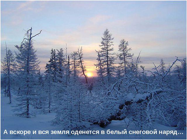А вскоре и вся земля оденется в белый снеговой наряд…