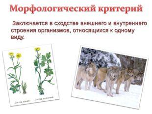 Заключается в сходстве внешнего и внутреннего строения организмов, относящих