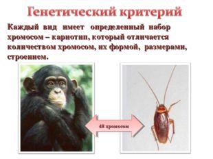 Каждый вид имеет определенный набор хромосом – кариотип, который отличается к