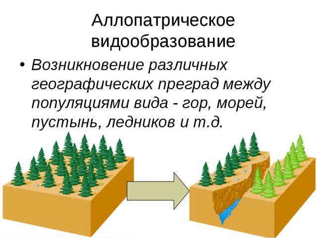Аллопатрическое видообразование Возникновение различных географических прегра...